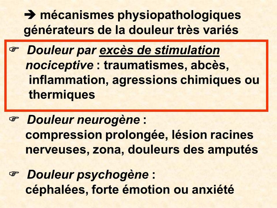  mécanismes physiopathologiques générateurs de la douleur très variés