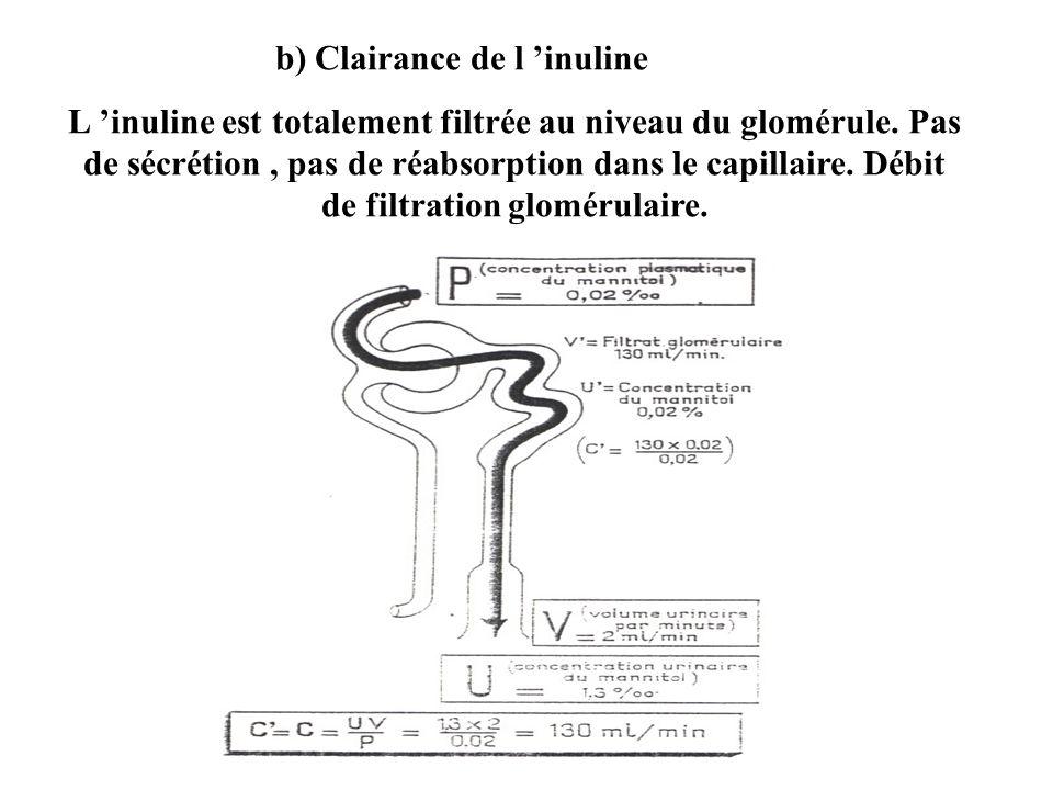b) Clairance de l 'inuline