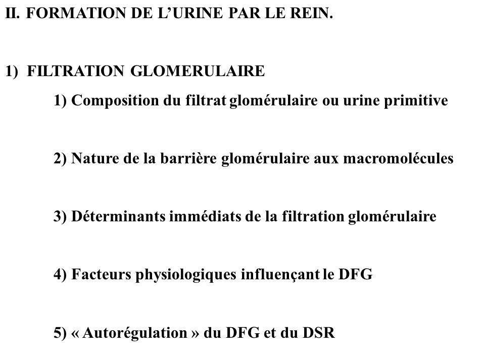 II. FORMATION DE L'URINE PAR LE REIN.