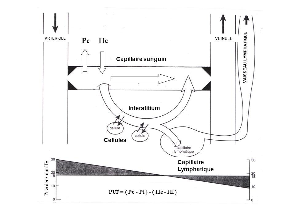 Pc c Capillaire sanguin Interstitium Cellules Capillaire Lymphatique