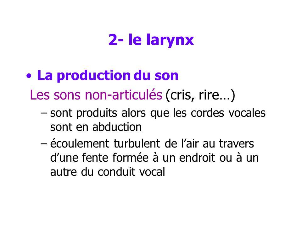 2- le larynx La production du son Les sons non-articulés (cris, rire…)