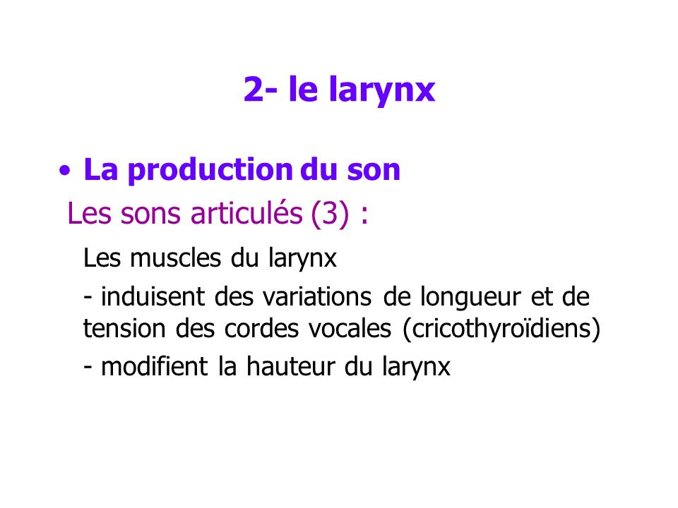 2- le larynx La production du son Les sons articulés (3) :
