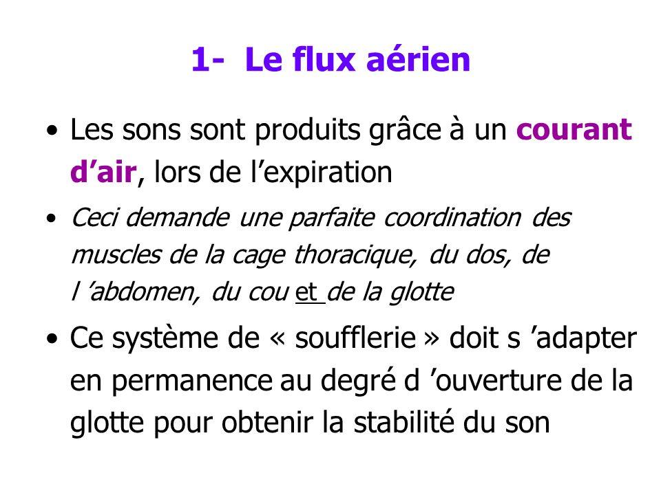 1- Le flux aérien Les sons sont produits grâce à un courant d'air, lors de l'expiration.