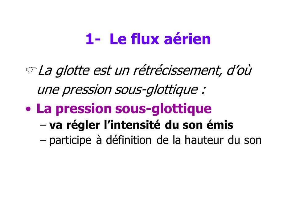 1- Le flux aérien La glotte est un rétrécissement, d'où une pression sous-glottique : La pression sous-glottique.