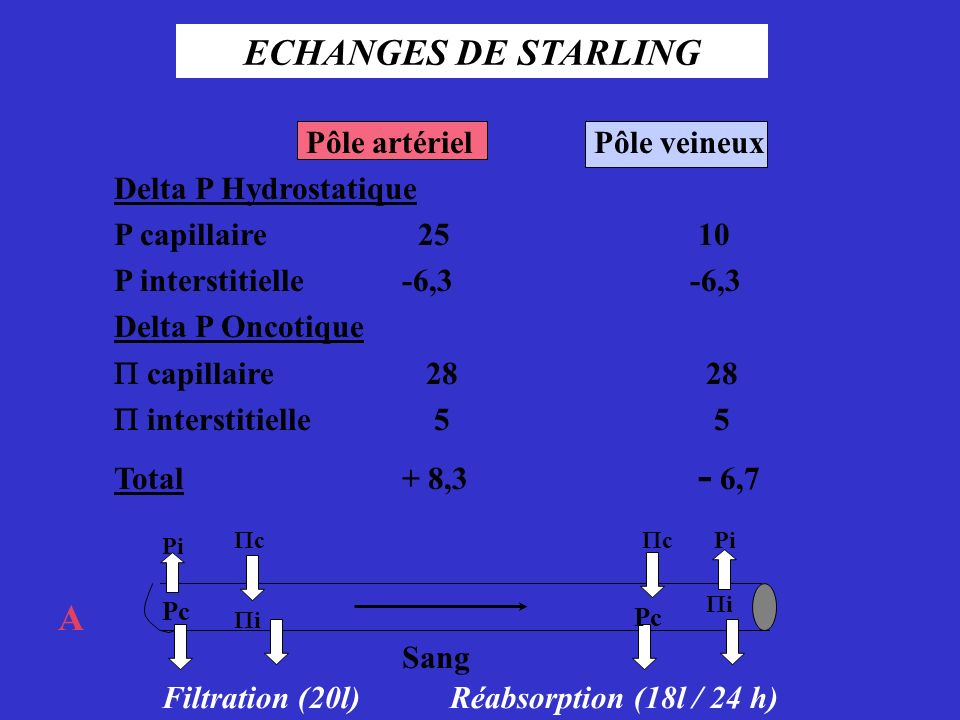 ECHANGES DE STARLING V A Pôle artériel Pôle veineux