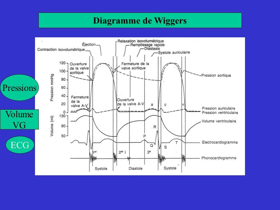 Diagramme de Wiggers Pressions Volume VG ECG