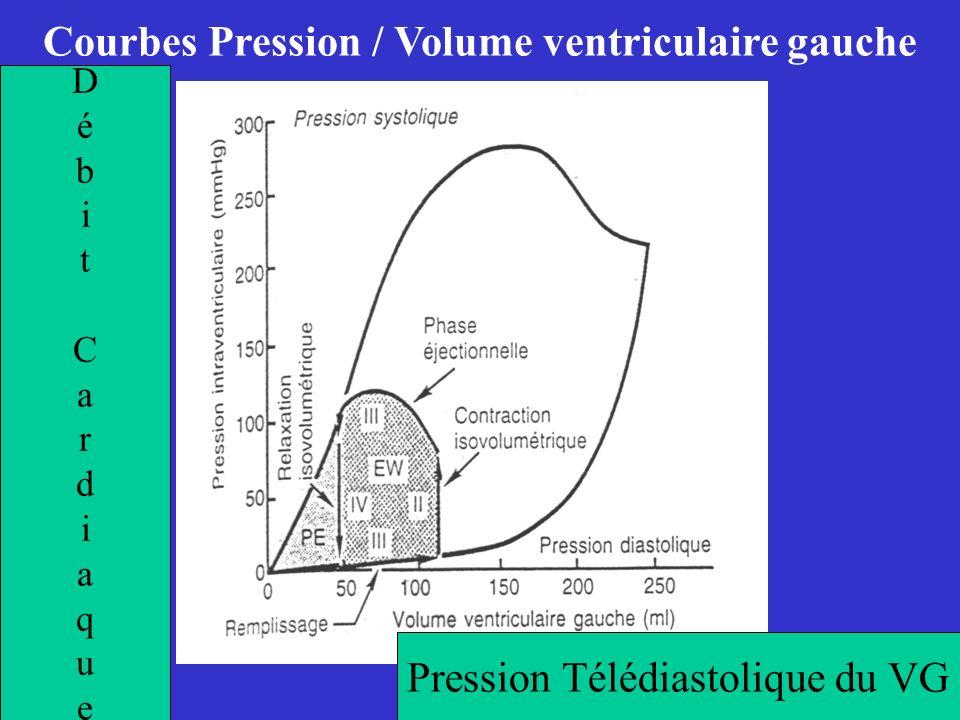 Courbes Pression / Volume ventriculaire gauche