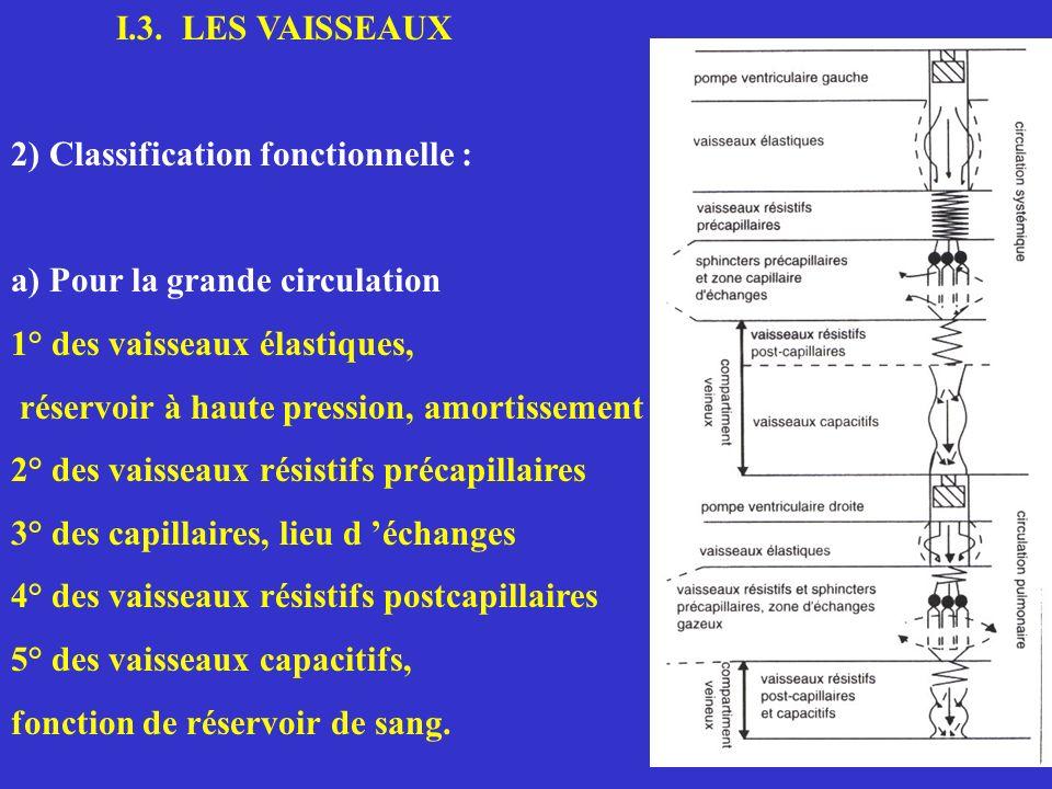 I.3. LES VAISSEAUX 2) Classification fonctionnelle : a) Pour la grande circulation. 1° des vaisseaux élastiques,