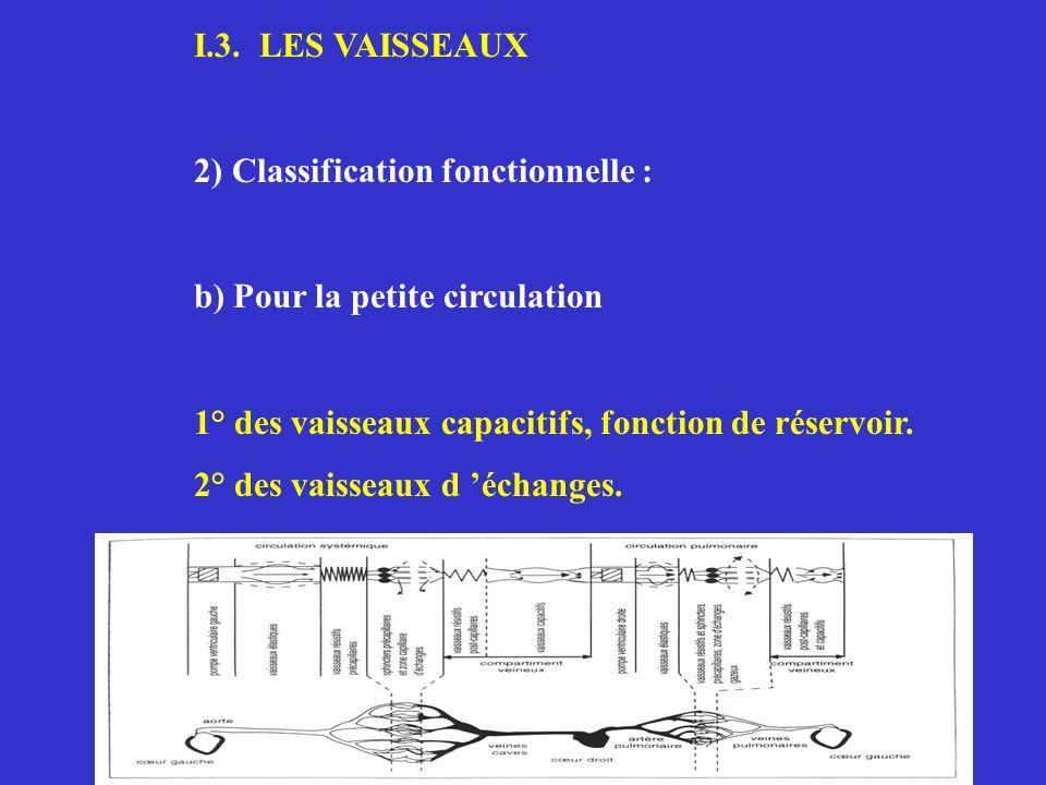 I.3. LES VAISSEAUX2) Classification fonctionnelle : b) Pour la petite circulation. 1° des vaisseaux capacitifs, fonction de réservoir.