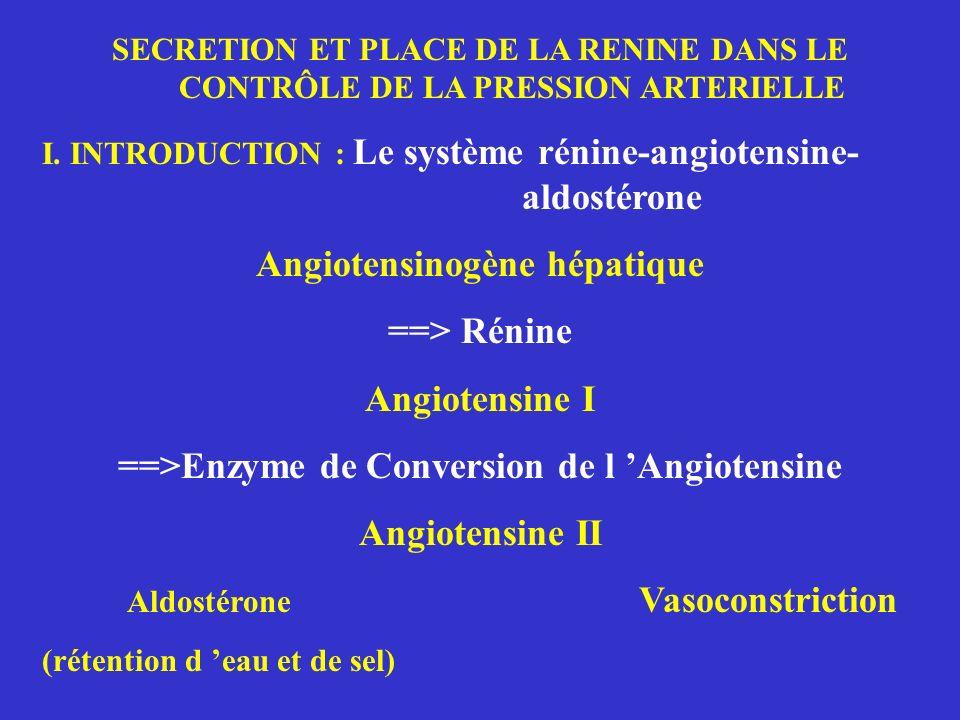 Angiotensinogène hépatique ==> Rénine Angiotensine I
