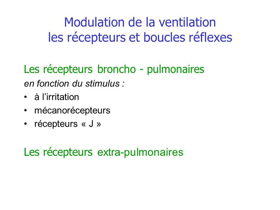 Modulation de la ventilation les récepteurs et boucles réflexes
