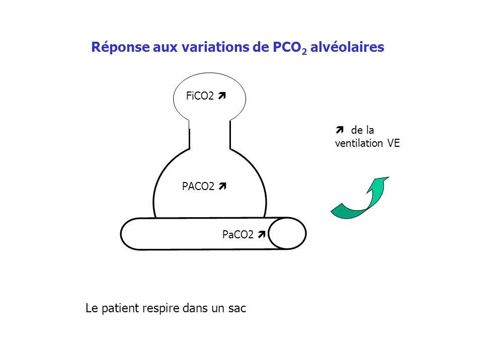 Réponse aux variations de PCO2 alvéolaires