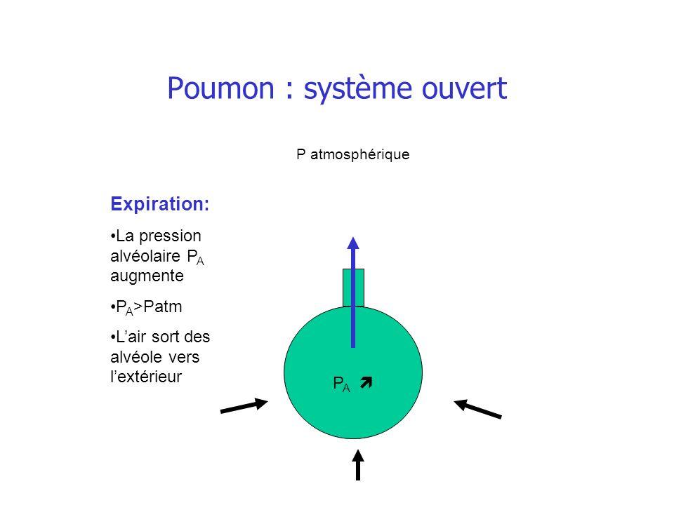 Poumon : système ouvert