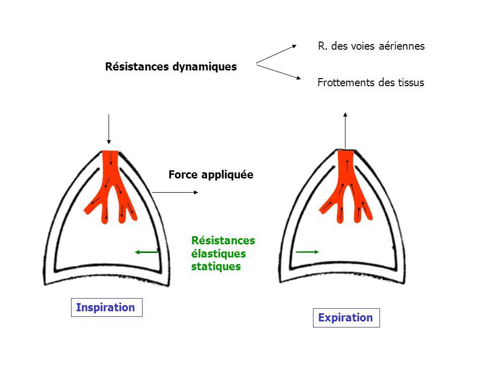 R. des voies aériennes Résistances dynamiques. Frottements des tissus. Force appliquée. Résistances.