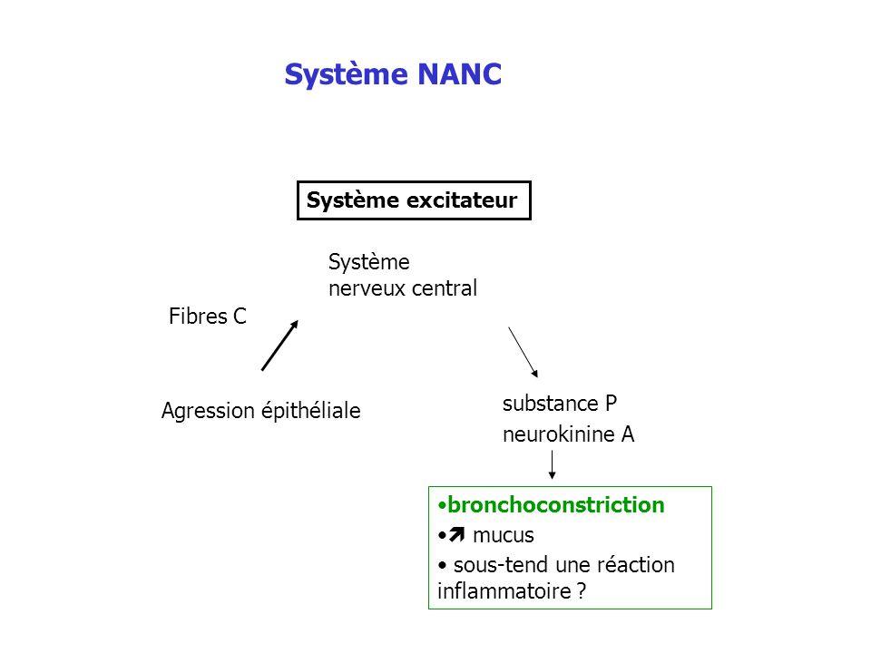 Système NANC Système excitateur Système nerveux central Fibres C
