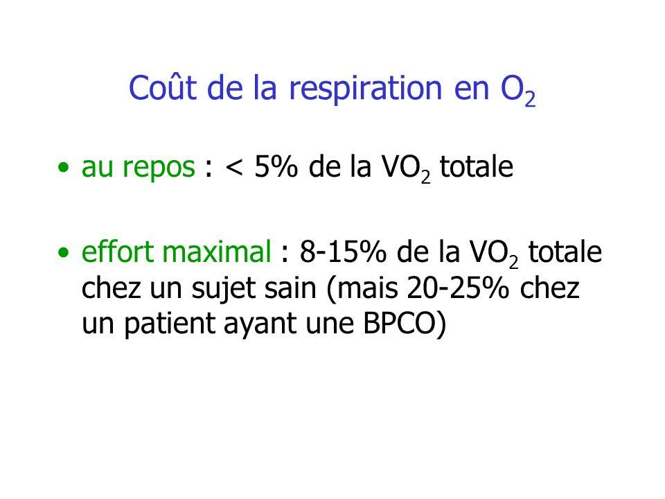 Coût de la respiration en O2