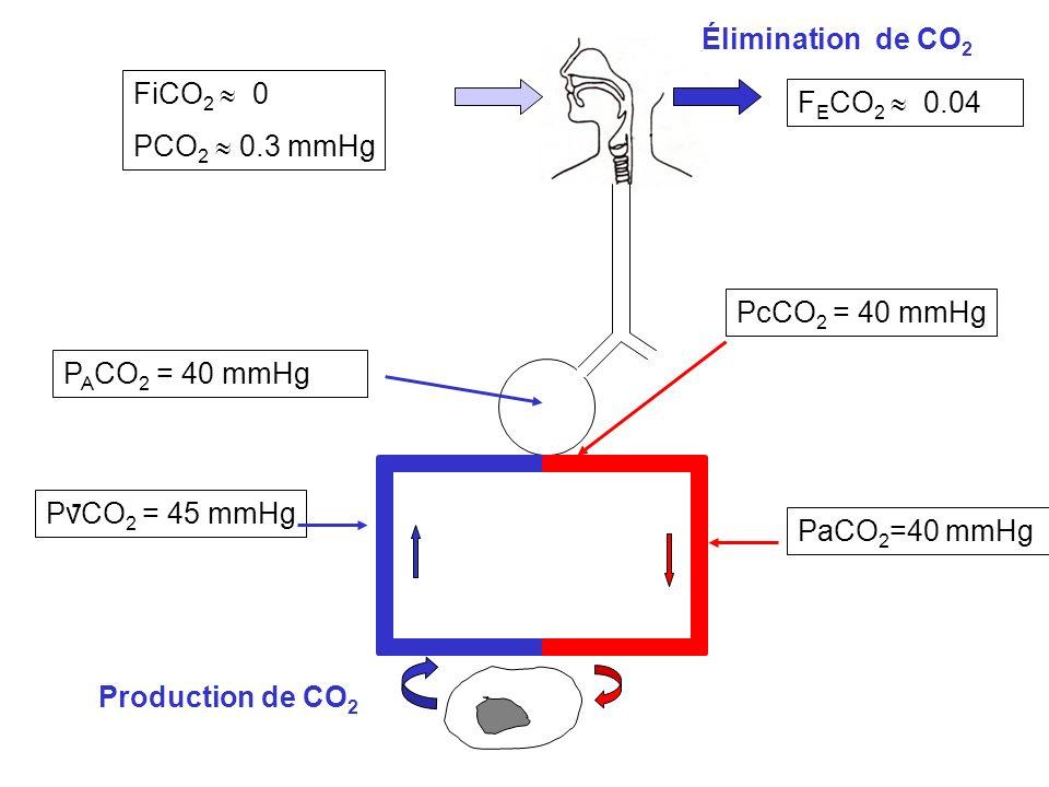Élimination de CO2 FiCO2  0 FECO2  0.04 PCO2  0.3 mmHg