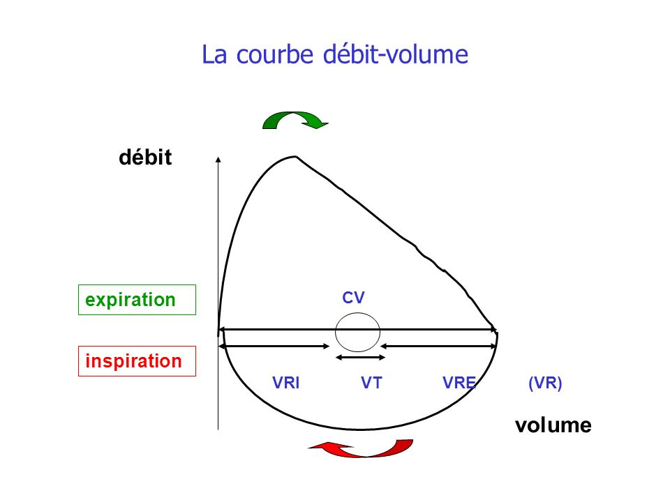 La courbe débit-volume