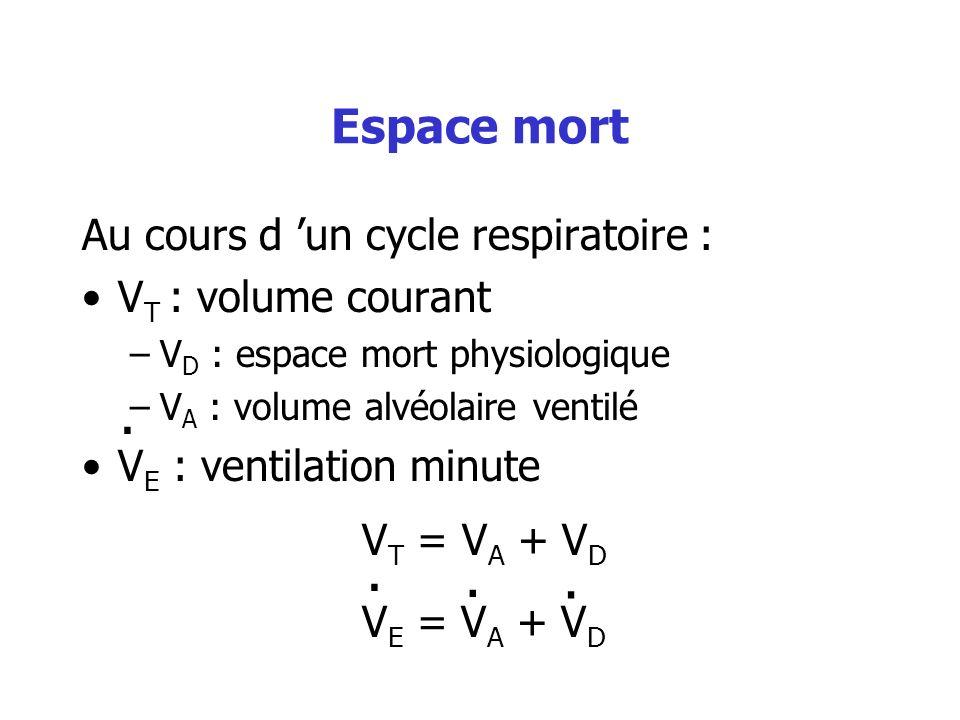 Espace mort Au cours d 'un cycle respiratoire : VT : volume courant
