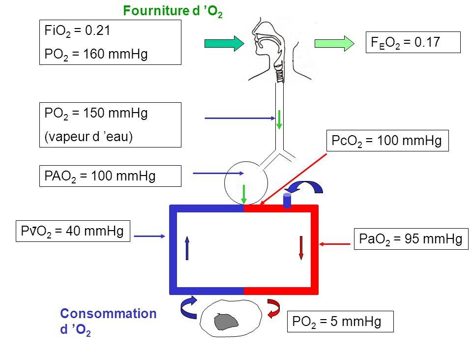 Fourniture d 'O2 FiO2 = 0.21 PO2 = 160 mmHg FEO2 = 0.17 PO2 = 150 mmHg