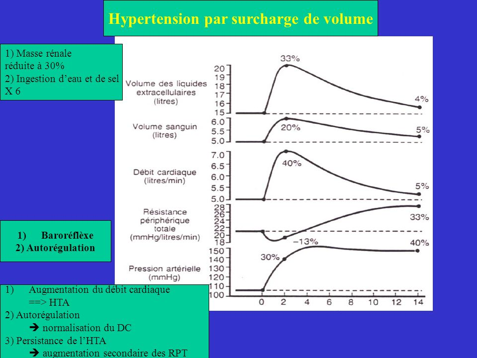 Hypertension par surcharge de volume