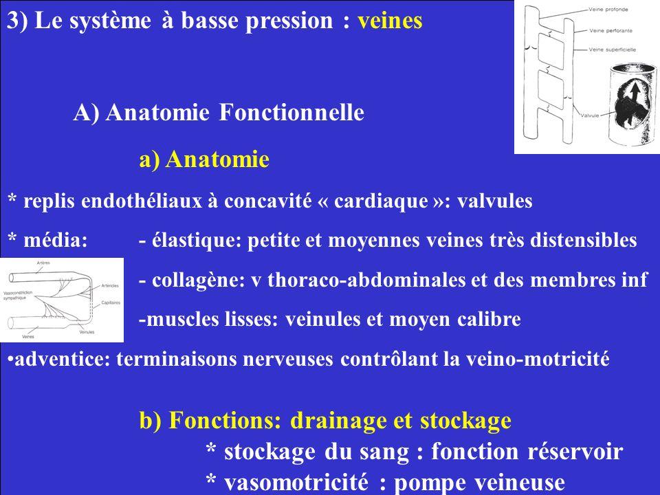 3) Le système à basse pression : veines