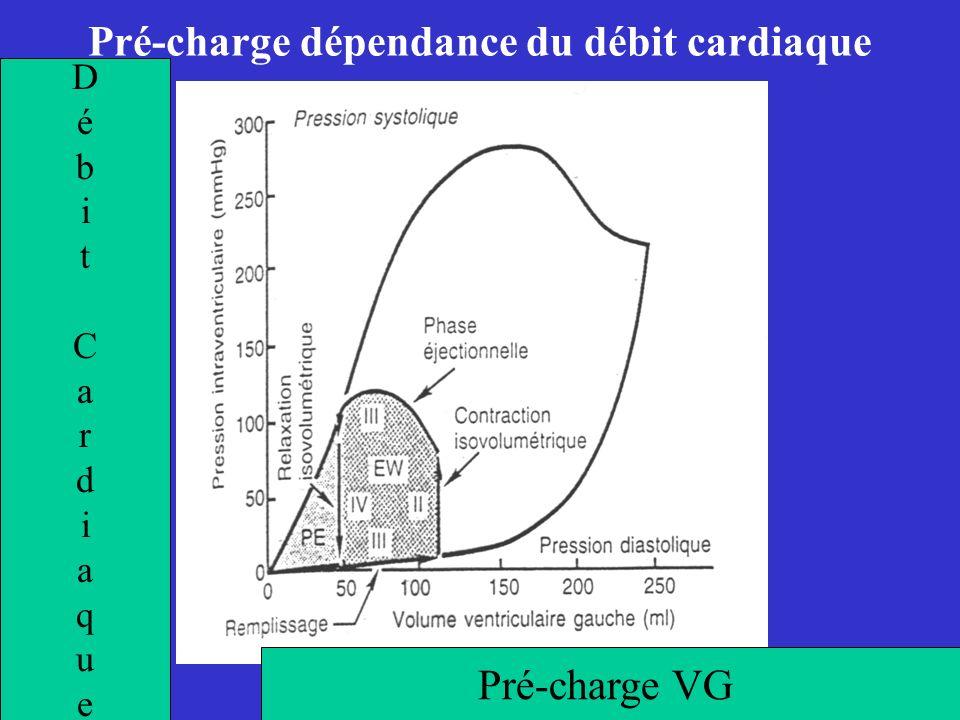 Pré-charge dépendance du débit cardiaque