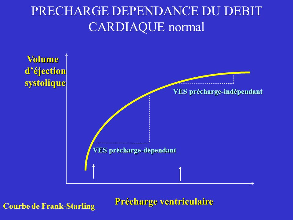 PRECHARGE DEPENDANCE DU DEBIT CARDIAQUE normal