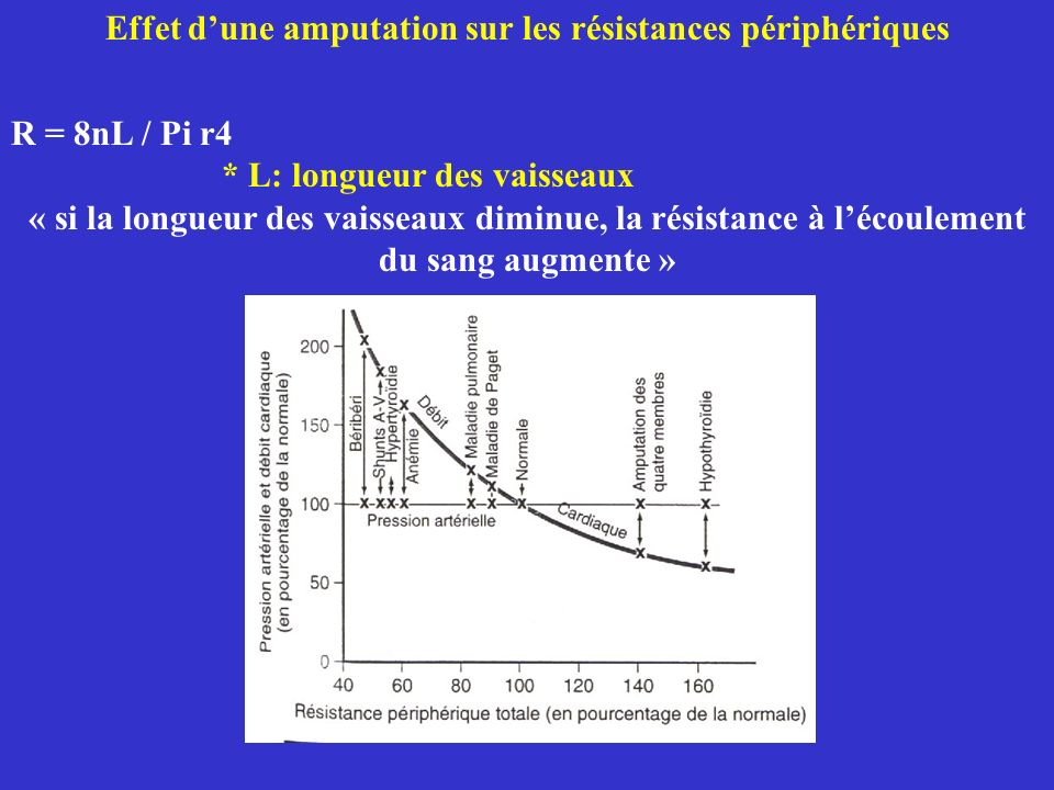 Effet d'une amputation sur les résistances périphériques