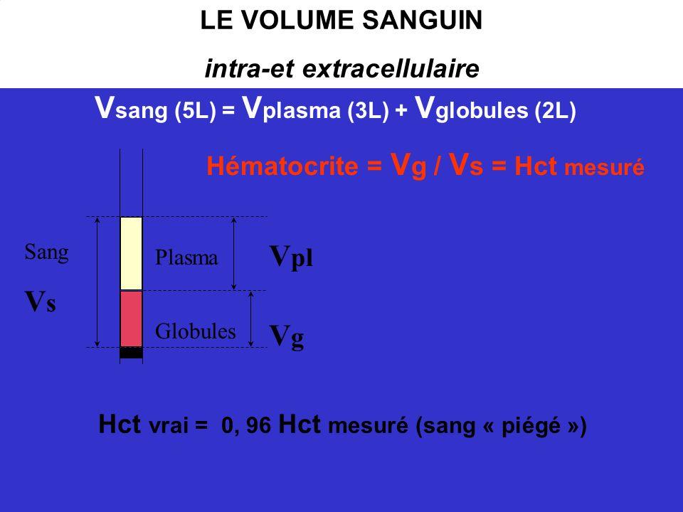 intra-et extracellulaire Vsang (5L) = Vplasma (3L) + Vglobules (2L)