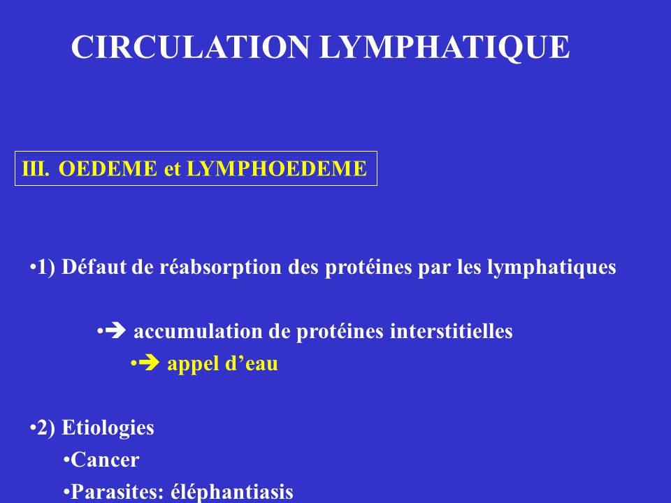 CIRCULATION LYMPHATIQUE
