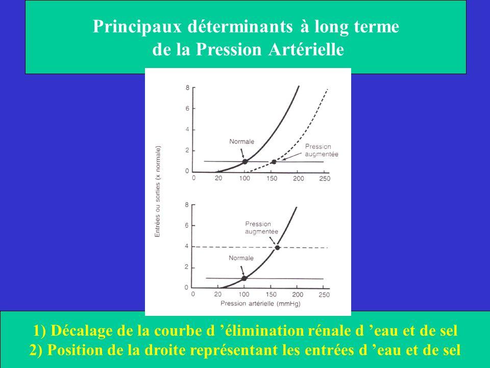 Principaux déterminants à long terme de la Pression Artérielle