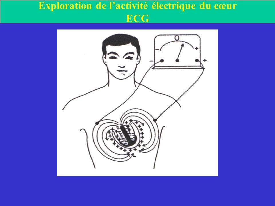 Exploration de l'activité électrique du cœur