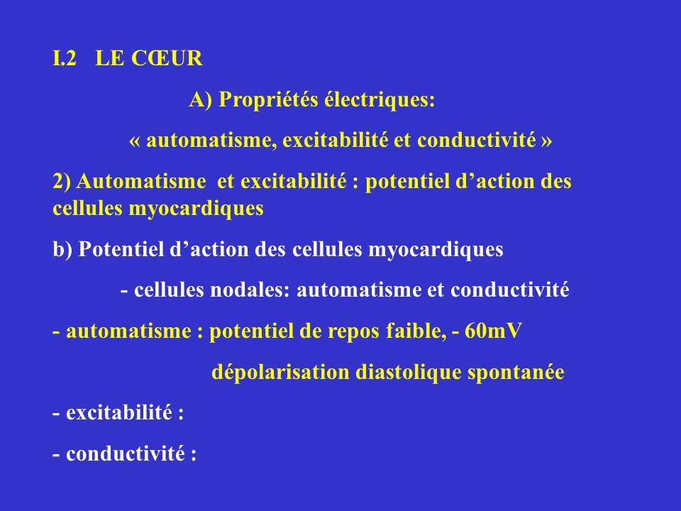 « automatisme, excitabilité et conductivité »