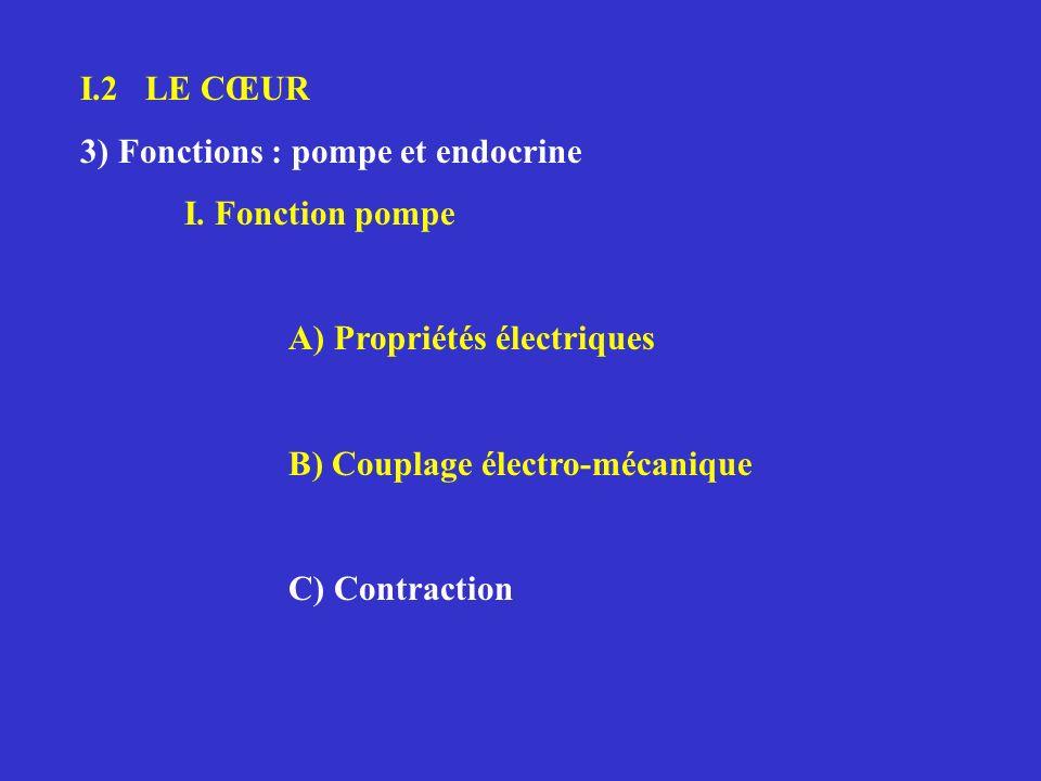 I.2 LE CŒUR 3) Fonctions : pompe et endocrine. I. Fonction pompe. A) Propriétés électriques. B) Couplage électro-mécanique.