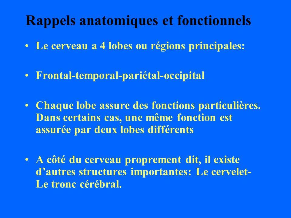 Rappels anatomiques et fonctionnels