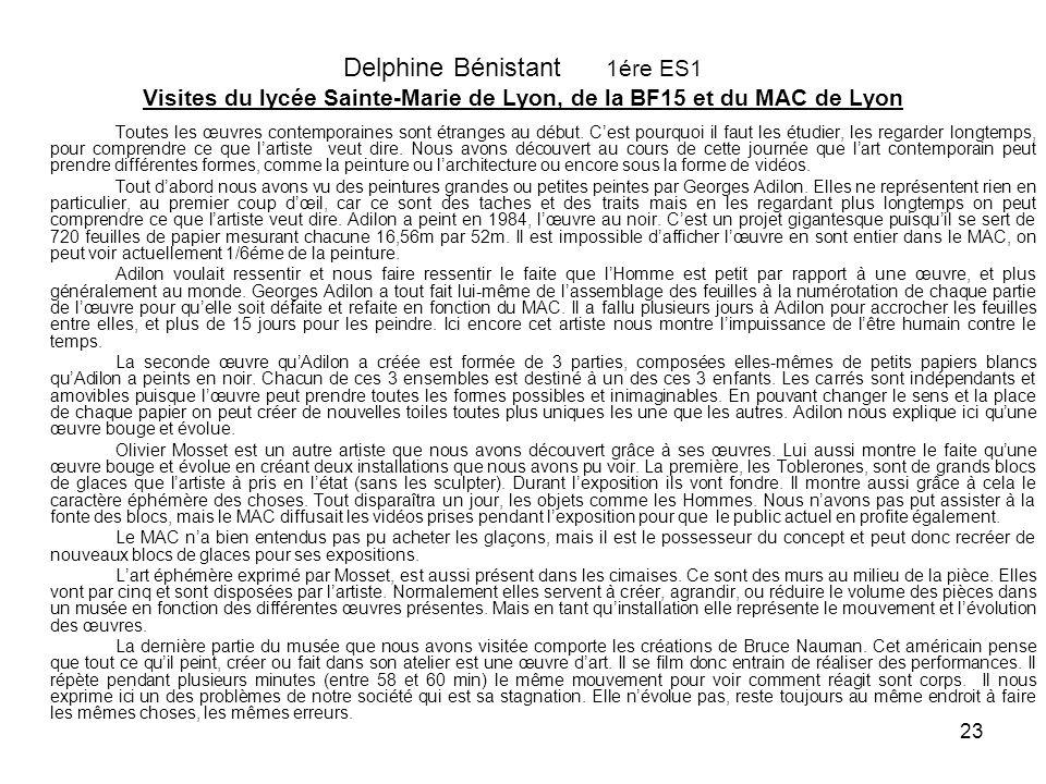 Delphine Bénistant 1ére ES1 Visites du lycée Sainte-Marie de Lyon, de la BF15 et du MAC de Lyon