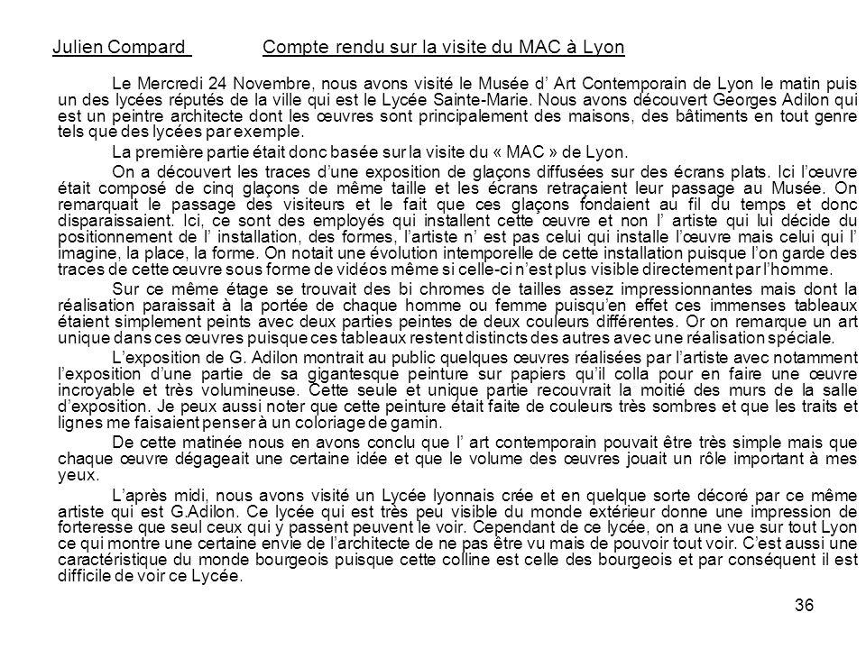 Julien Compard Compte rendu sur la visite du MAC à Lyon