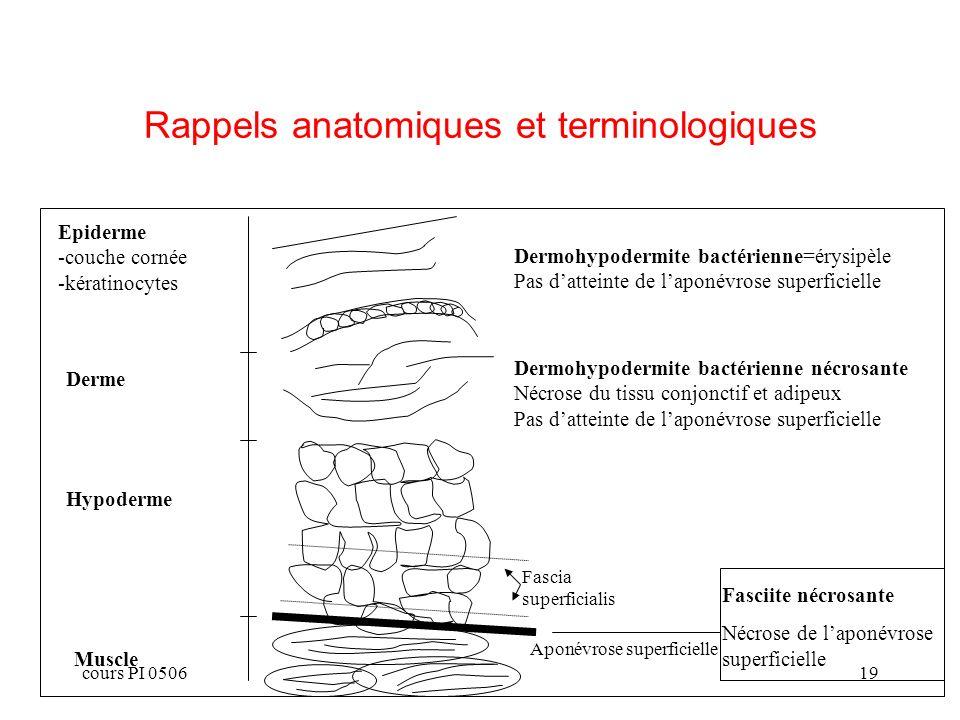 Rappels anatomiques et terminologiques