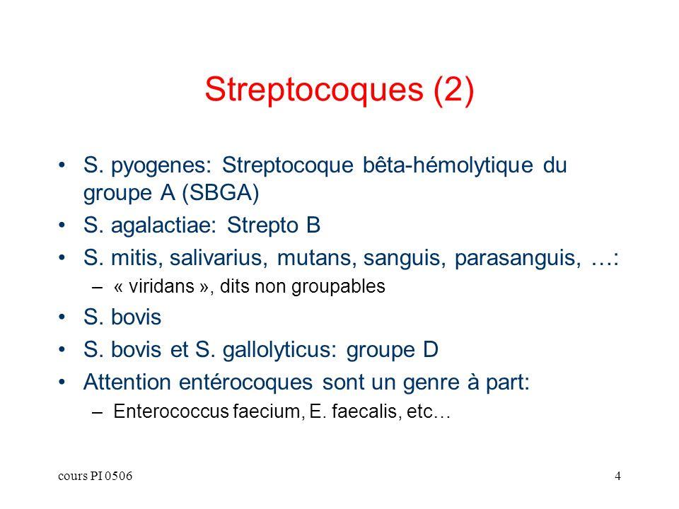 Streptocoques (2)S. pyogenes: Streptocoque bêta-hémolytique du groupe A (SBGA) S. agalactiae: Strepto B.