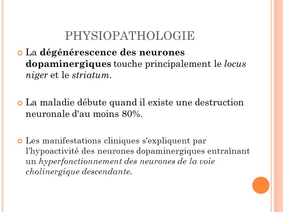 PHYSIOPATHOLOGIE La dégénérescence des neurones dopaminergiques touche principalement le locus niger et le striatum.