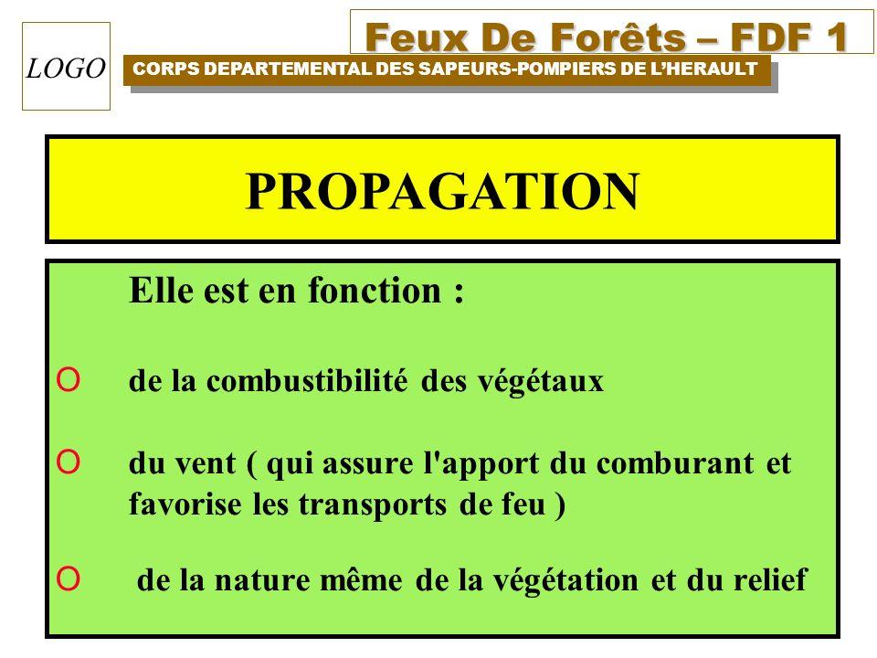 PROPAGATION Elle est en fonction : de la combustibilité des végétaux