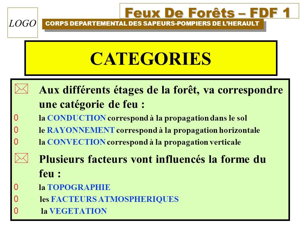 CATEGORIES Aux différents étages de la forêt, va correspondre une catégorie de feu : la CONDUCTION correspond à la propagation dans le sol.