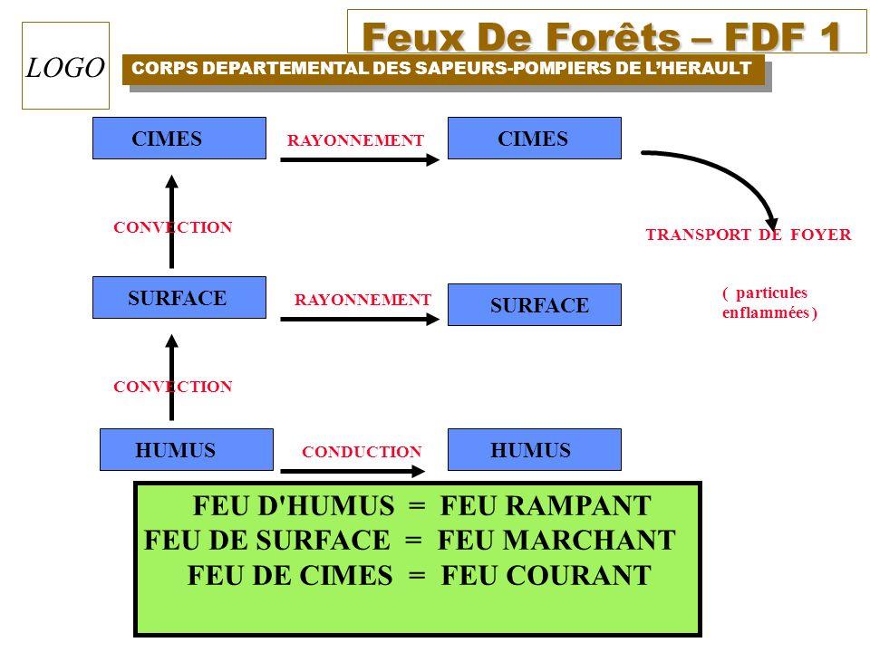FEU DE SURFACE = FEU MARCHANT FEU DE CIMES = FEU COURANT