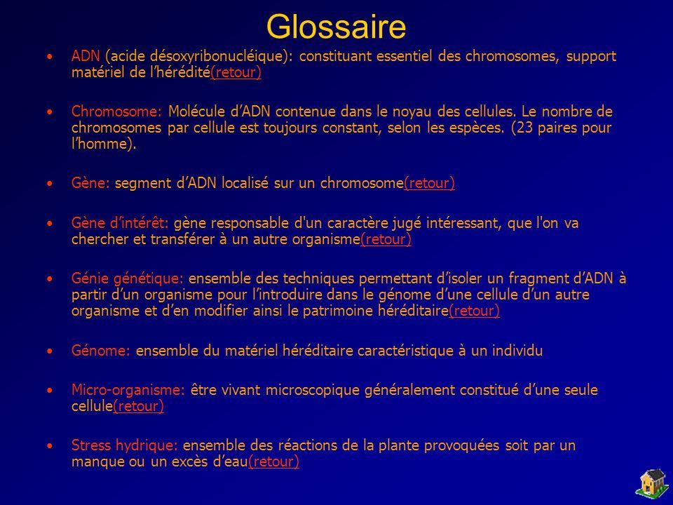 Glossaire ADN (acide désoxyribonucléique): constituant essentiel des chromosomes, support matériel de l'hérédité(retour)