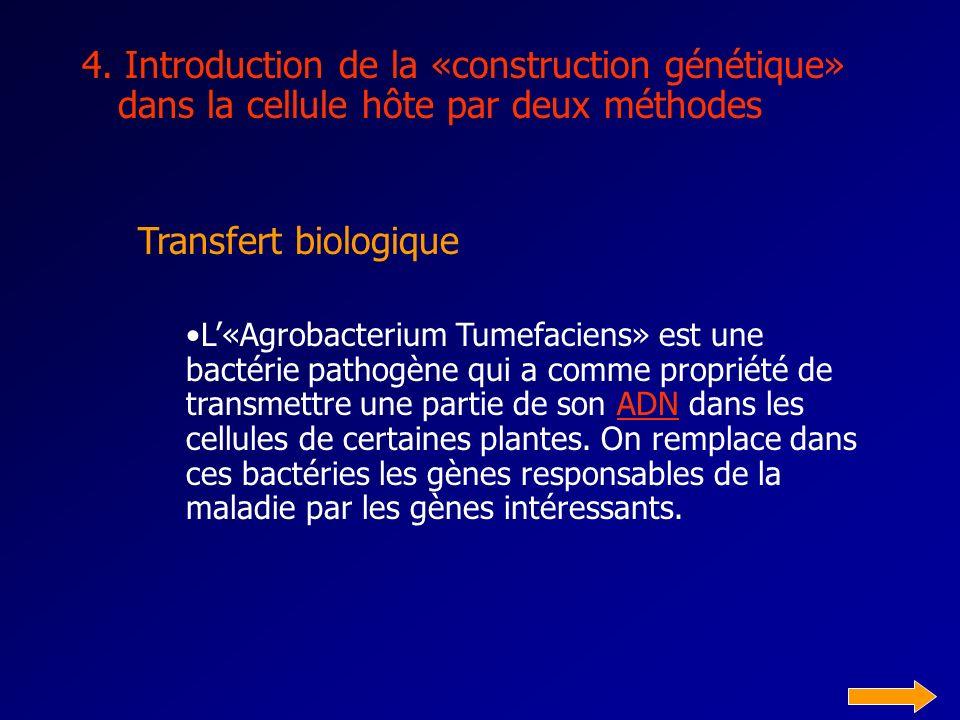 4. Introduction de la «construction génétique» dans la cellule hôte par deux méthodes