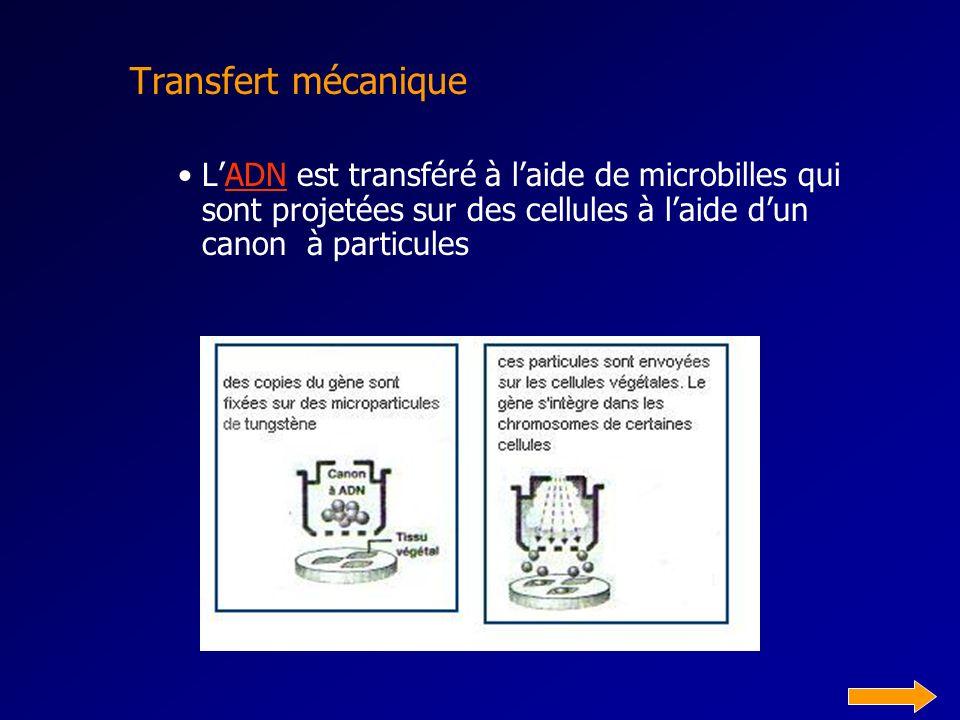 Transfert mécanique L'ADN est transféré à l'aide de microbilles qui sont projetées sur des cellules à l'aide d'un canon à particules.