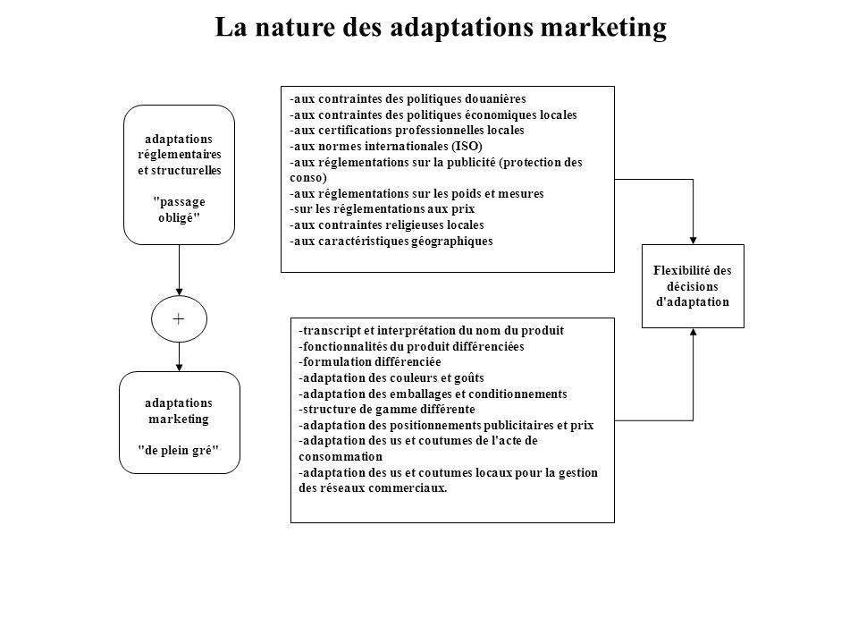 La nature des adaptations marketing