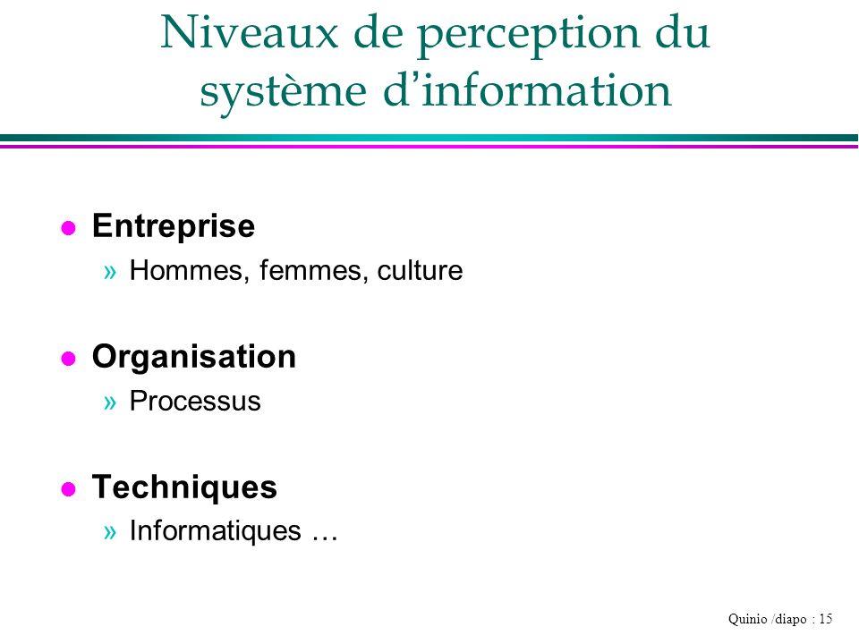 Niveaux de perception du système d'information