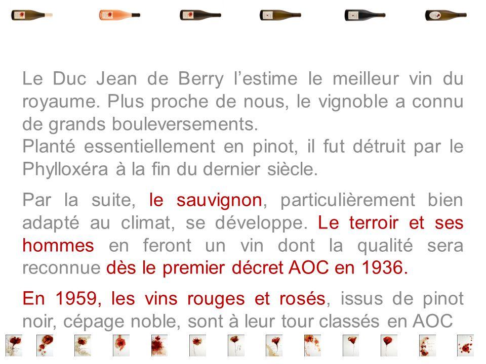 Le Duc Jean de Berry l'estime le meilleur vin du royaume